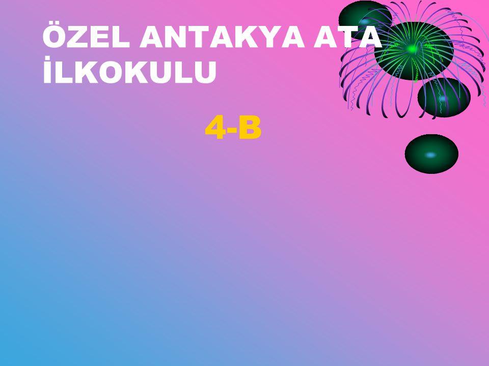 ÖZEL ANTAKYA ATA İLKOKULU 4-B