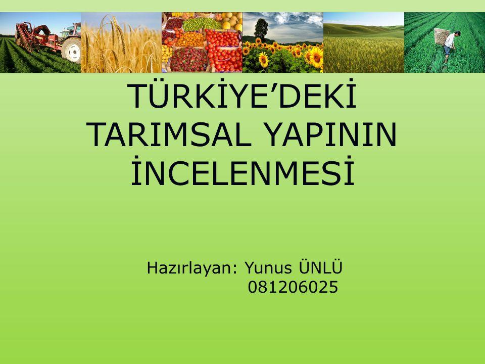 TÜRKİYE'DEKİ TARIMSAL YAPININ İNCELENMESİ Hazırlayan: Yunus ÜNLÜ 081206025