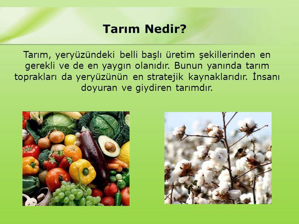 Türkiye'de Tarım Sektörünün Sorunları Tarıma ilişkin yetki ve sorumlulukların pek çok kurumun görev alanına girmesi ve bu kurumlar arasındaki koordinasyon yetersizliği bütünlüğü ve sürekliliği sağlayacak tarımsal politikaların oluşmasını engellemektedir.