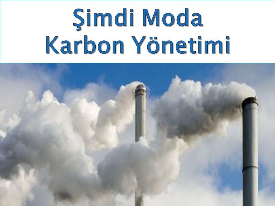 Dünyada karbon yönetiminin çevreye olduğu kadar markaya da katkısı olduğunu anlayan pek çok şirket karbon yönetimi konusunda harekete geçti.