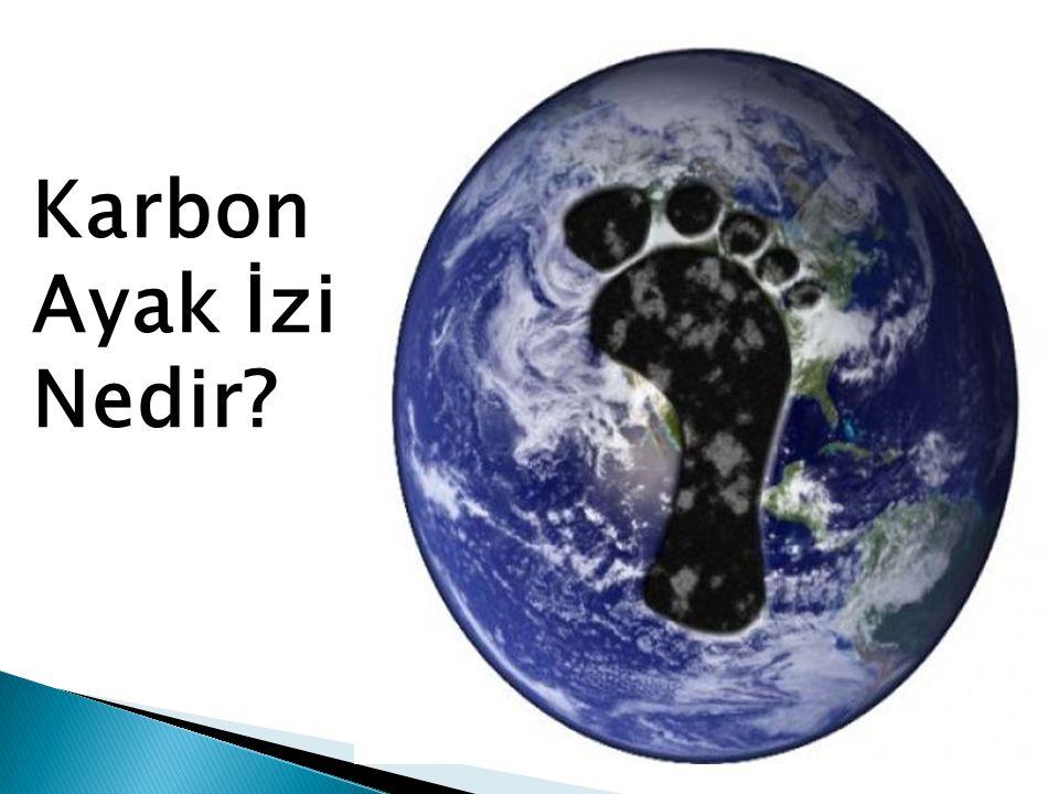 Karbon Ayak İzi Nedir?