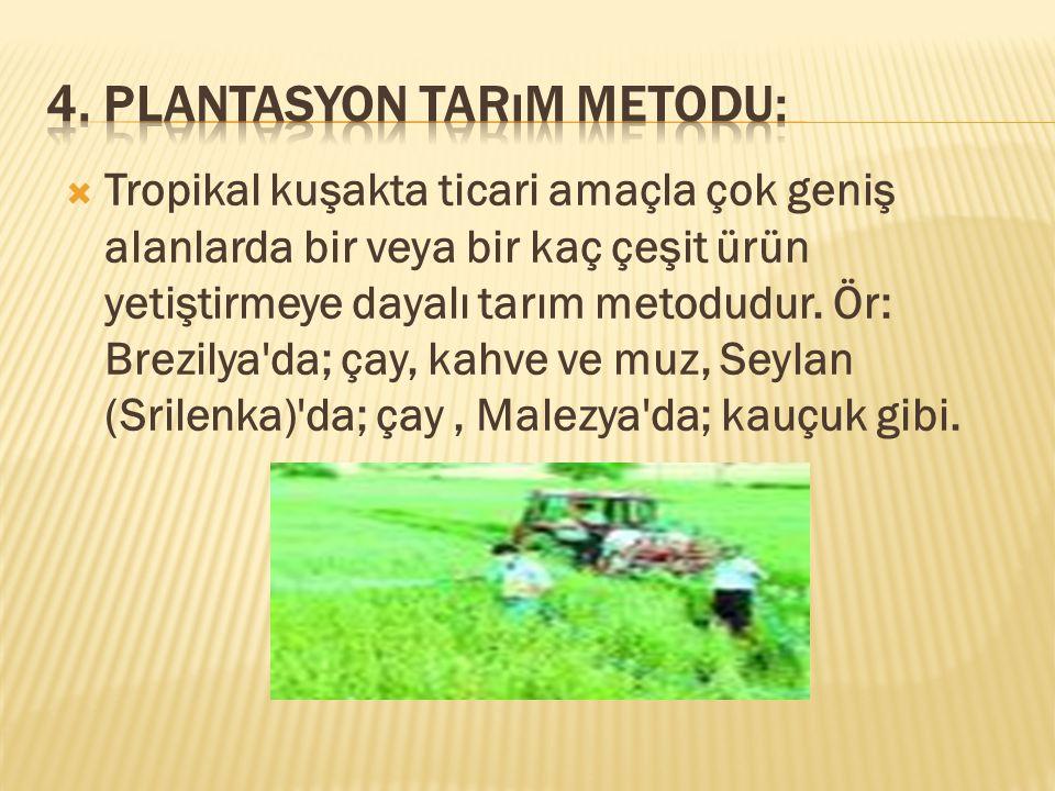  Tropikal kuşakta ticari amaçla çok geniş alanlarda bir veya bir kaç çeşit ürün yetiştirmeye dayalı tarım metodudur.