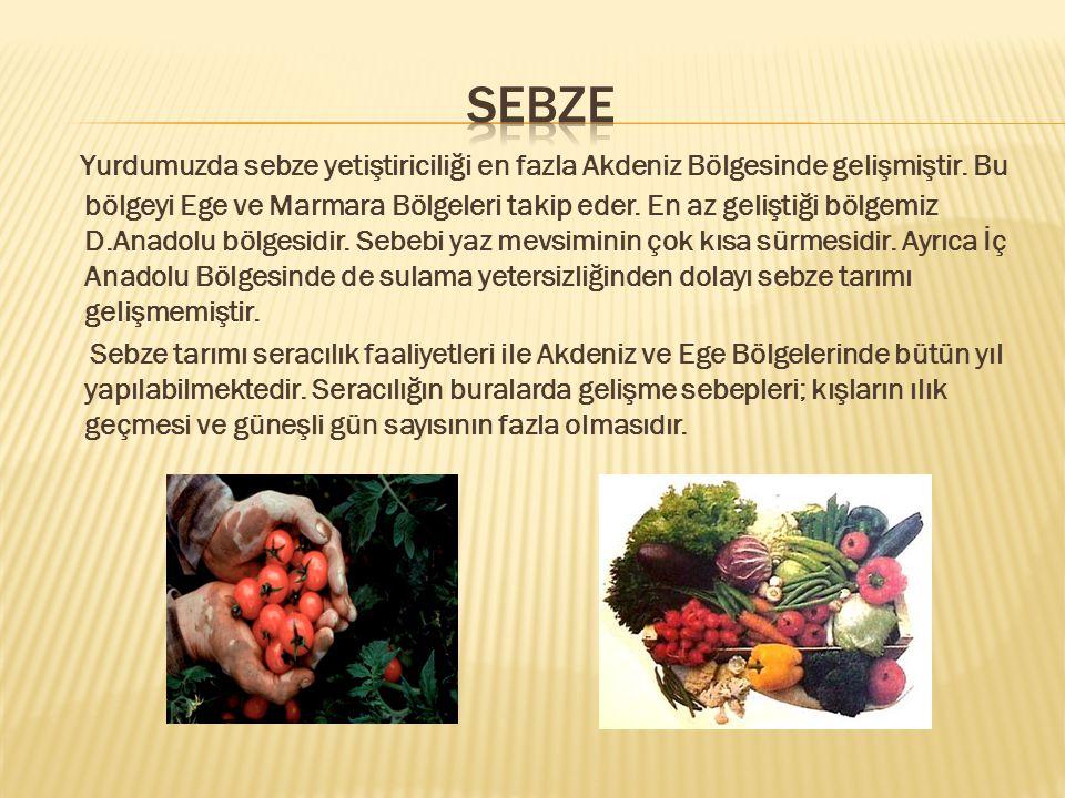 Yurdumuzda sebze yetiştiriciliği en fazla Akdeniz Bölgesinde gelişmiştir.