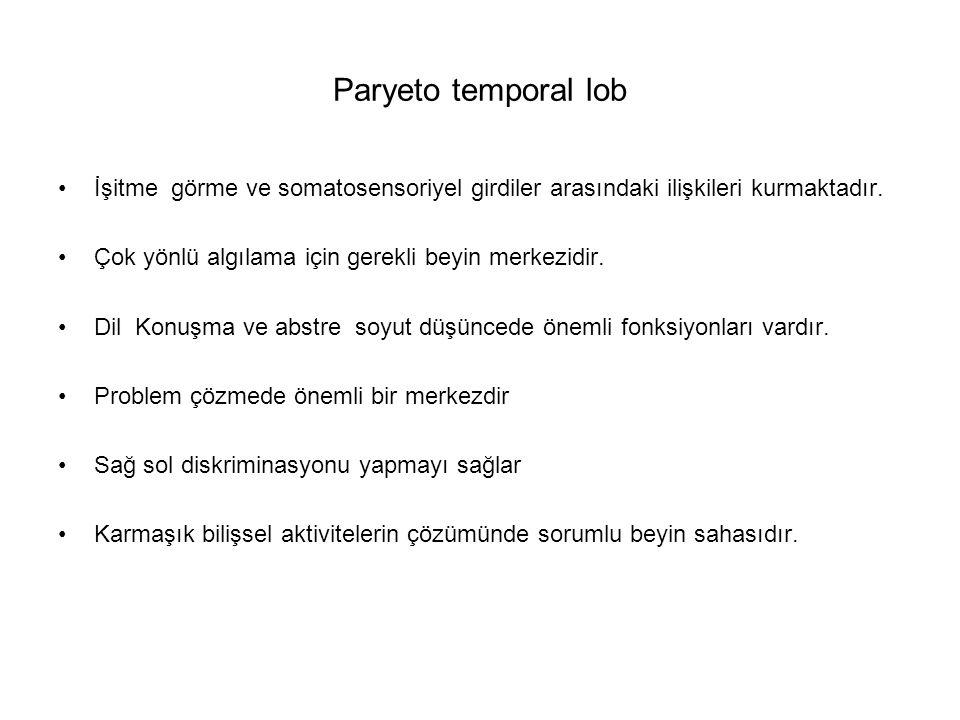 Paryeto temporal lob İşitme görme ve somatosensoriyel girdiler arasındaki ilişkileri kurmaktadır. Çok yönlü algılama için gerekli beyin merkezidir. Di