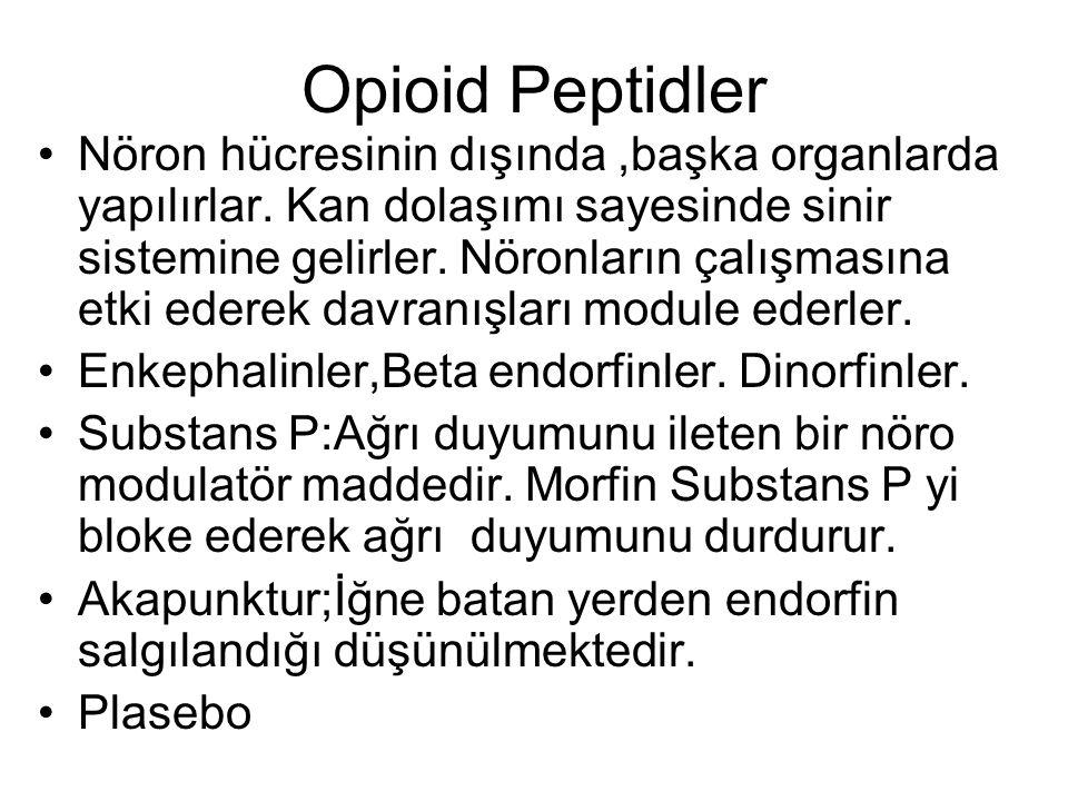 Opioid Peptidler Nöron hücresinin dışında,başka organlarda yapılırlar. Kan dolaşımı sayesinde sinir sistemine gelirler. Nöronların çalışmasına etki ed