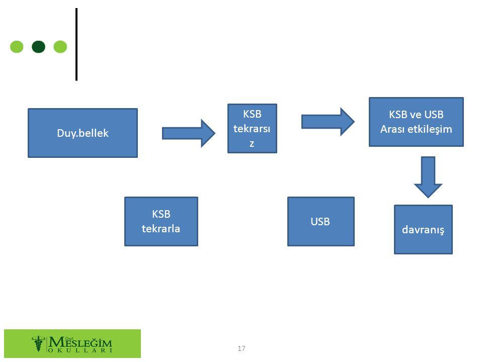 17 Duy.bellek KSB ve USB Arası etkileşim KSB tekrarsı z KSB tekrarla USB davranış