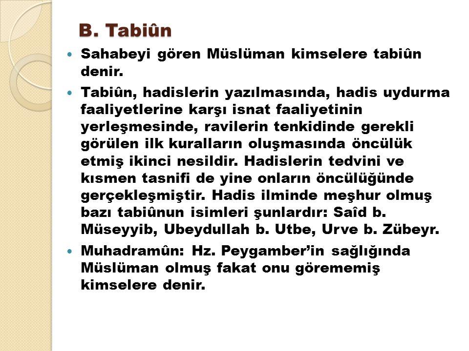 B. Tabiûn Sahabeyi gören Müslüman kimselere tabiûn denir. Tabiûn, hadislerin yazılmasında, hadis uydurma faaliyetlerine karşı isnat faaliyetinin yerle