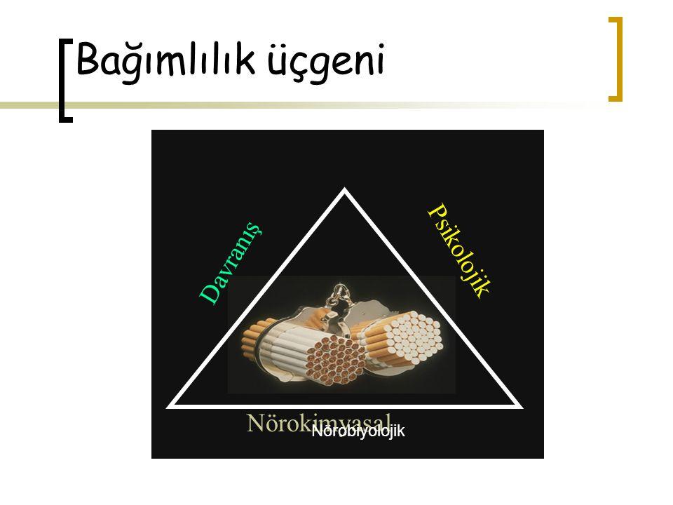 Nikotin bağımlılığının psikolojik ve davranış boyutunu anlamak neden önemlidir.