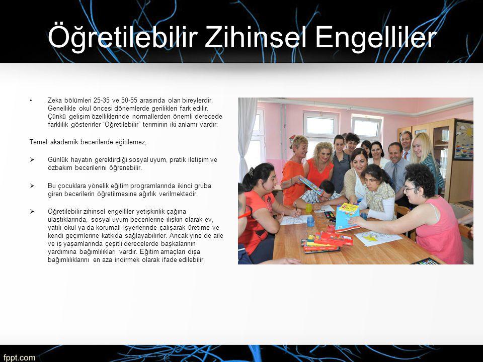 Öğretilebilir Zihinsel Engelliler Zeka bölümleri 25-35 ve 50-55 arasında olan bireylerdir. Genellikle okul öncesi dönemlerde gerilikleri fark edilir.