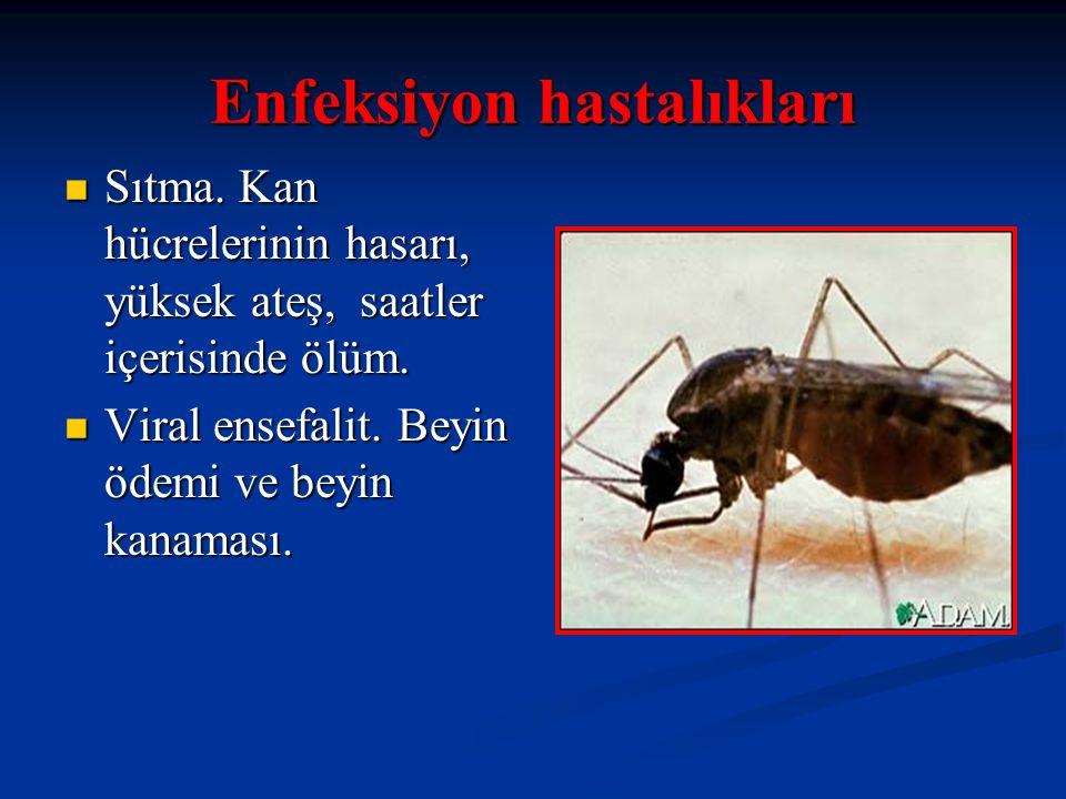Enfeksiyon hastalıkları Sıtma. Kan hücrelerinin hasarı, yüksek ateş, saatler içerisinde ölüm. Sıtma. Kan hücrelerinin hasarı, yüksek ateş, saatler içe