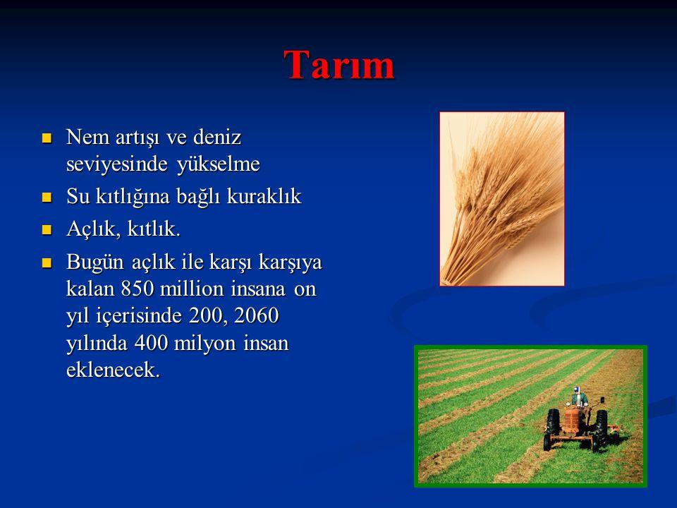 Tarım Nem artışı ve deniz seviyesinde yükselme Nem artışı ve deniz seviyesinde yükselme Su kıtlığına bağlı kuraklık Su kıtlığına bağlı kuraklık Açlık,