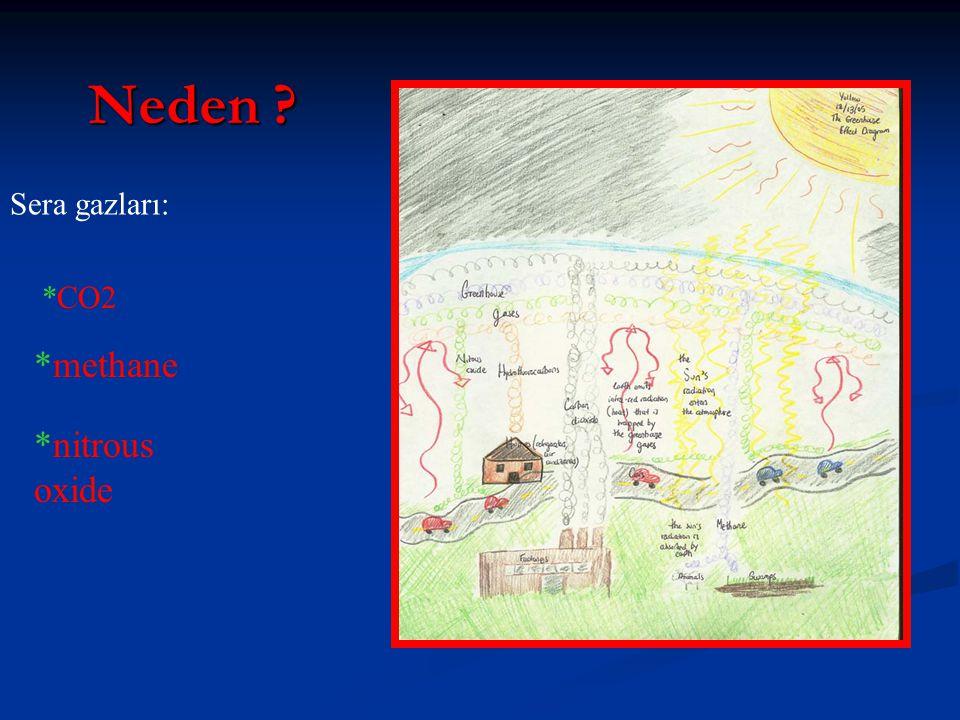 Neden *CO2 *methane *nitrous oxide Sera gazları: