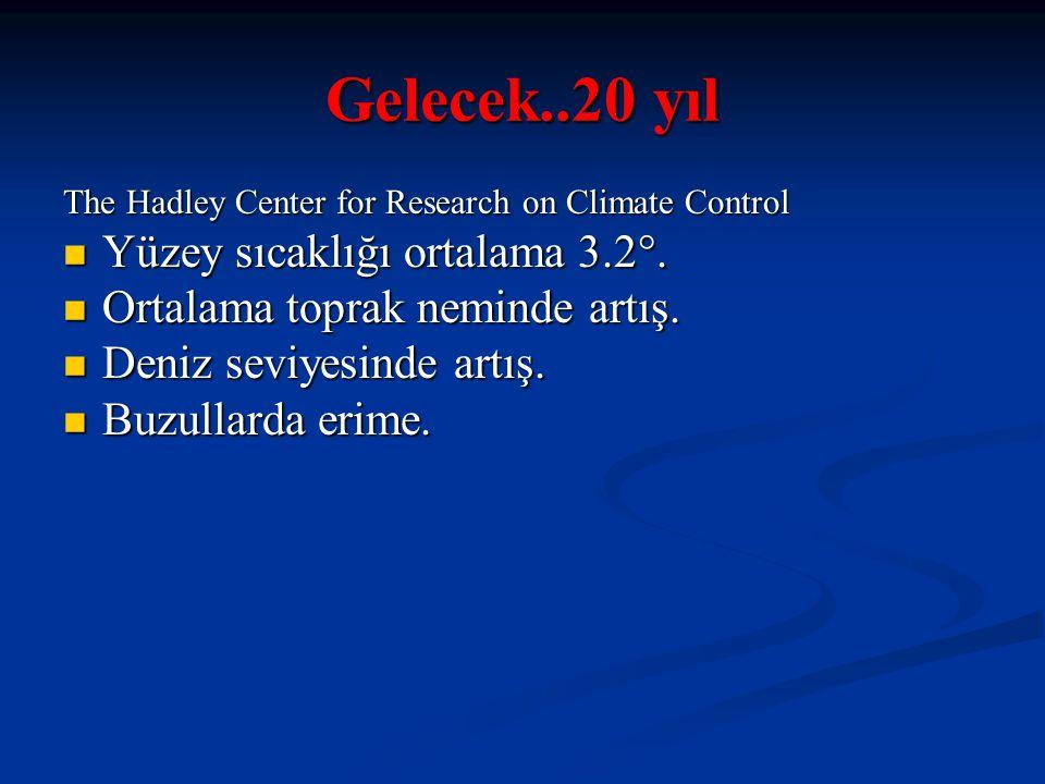 Gelecek..20 yıl The Hadley Center for Research on Climate Control Yüzey sıcaklığı ortalama 3.2°. Yüzey sıcaklığı ortalama 3.2°. Ortalama toprak nemind
