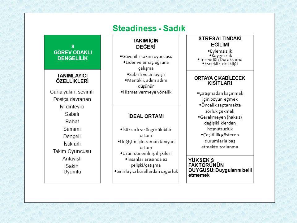 Steadiness - Sadık S GÖREV ODAKLI DENGELİLİK TAKIM İÇİN DEĞERİ Güvenilir takım oyuncusu Lider ve amaç uğruna çalışma Sabırlı ve anlayışlı Mantıklı, ad