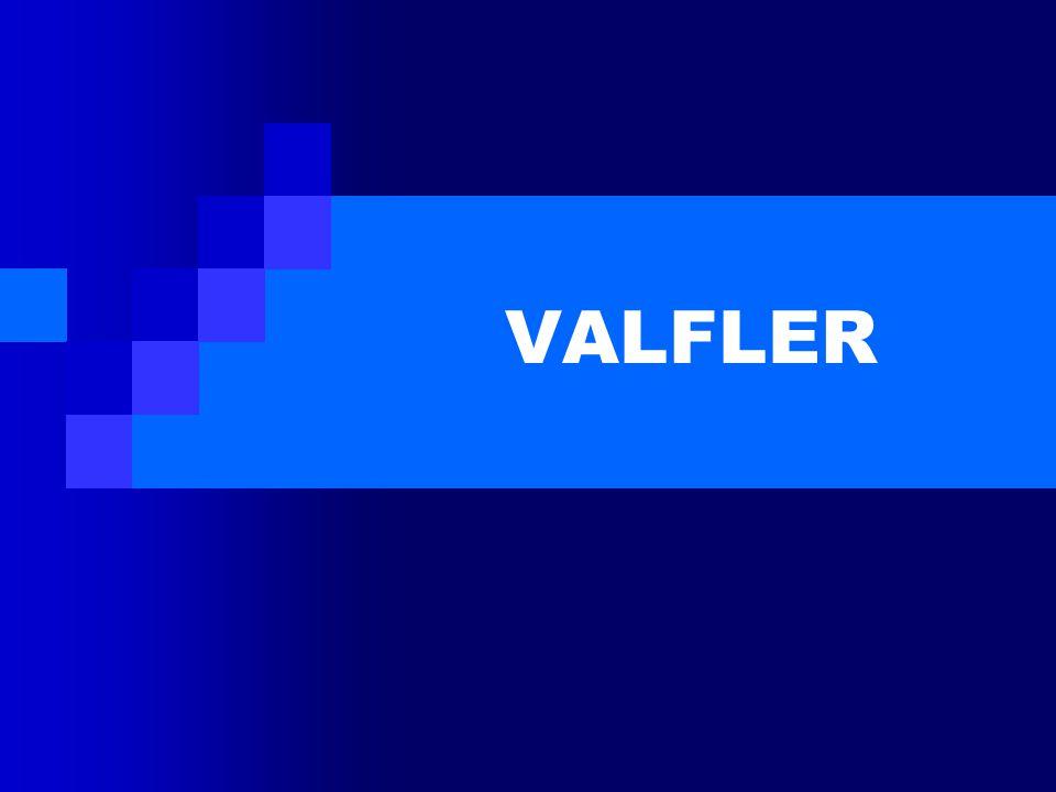 A.AKIŞ KONTROL VALFLERİ 1.STOP VALFLER a)GLOBE ( GLOB) VALF b)METAL KÖRÜKLÜ VALF c)GATE ( GEYT ) VALF (SÜRGÜ, SÜLÜS, KAPI) d)PİSTON VALF e)İĞNE ( NİDIL ) VALF f)MUSLUK ( PLUG ) VALF ( DREYN) g)KELEBEK VALF h)KÜRESEL VALF 2.ÇEK VALFLER a)ÇALPARA ( SWING, FLAPPER, SALINIMLI ) ÇEK VALF b)LIFT ( YÜKSELEN ) ÇEK VALF c)KELEBEK ÇEK VALF d)STOP ÇEK VALF