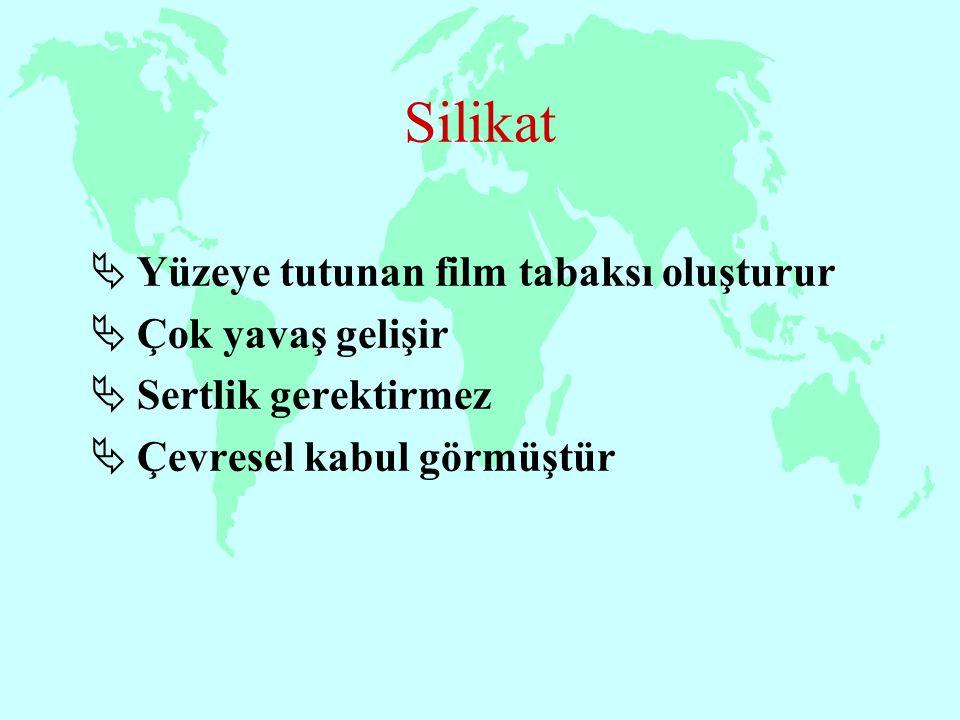 Silikat  Yüzeye tutunan film tabaksı oluşturur  Çok yavaş gelişir  Sertlik gerektirmez  Çevresel kabul görmüştür
