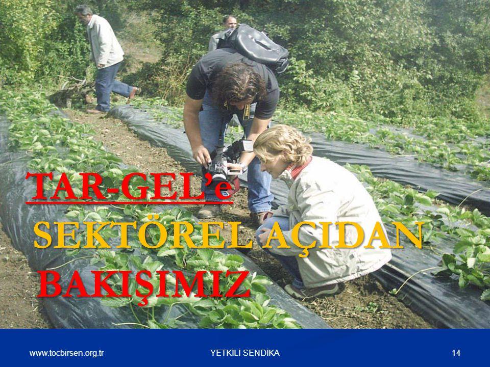 www.tocbirsen.org.tr 14YETKİLİ SENDİKA TAR-GEL'e SEKTÖREL AÇIDAN BAKIŞIMIZ