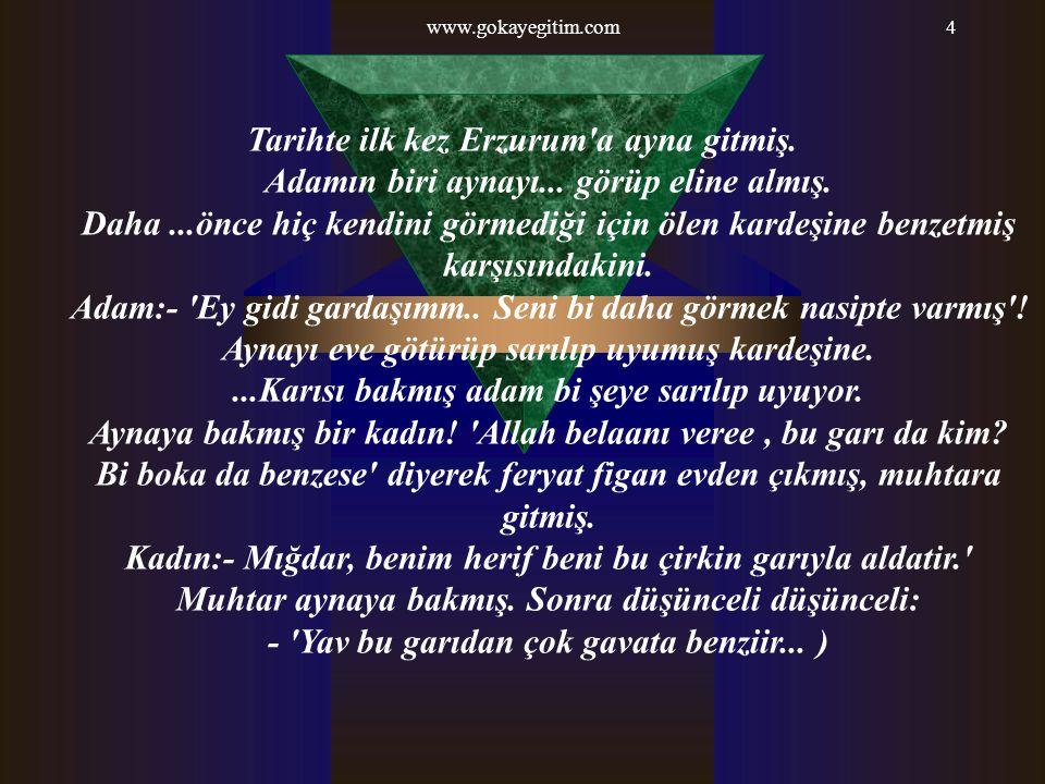 www.gokayegitim.com4 Tarihte ilk kez Erzurum'a ayna gitmiş. Adamın biri aynayı... görüp eline almış. Daha...önce hiç kendini görmediği için ölen karde