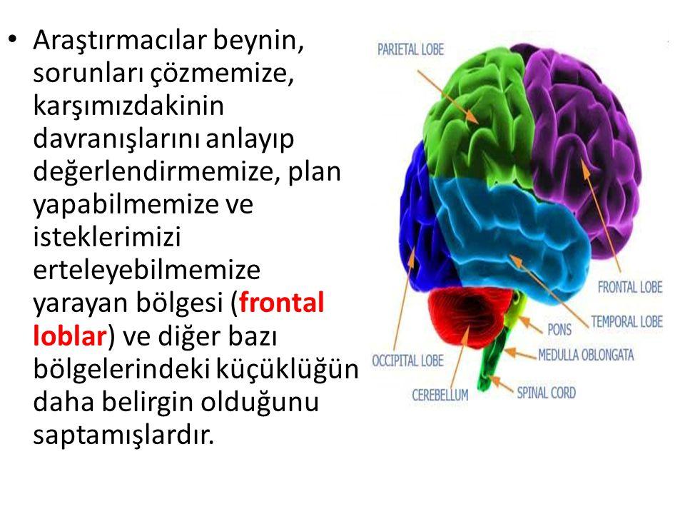 Araştırmacılar beynin, sorunları çözmemize, karşımızdakinin davranışlarını anlayıp değerlendirmemize, plan yapabilmemize ve isteklerimizi erteleyebilmemize yarayan bölgesi (frontal loblar) ve diğer bazı bölgelerindeki küçüklüğün daha belirgin olduğunu saptamışlardır.