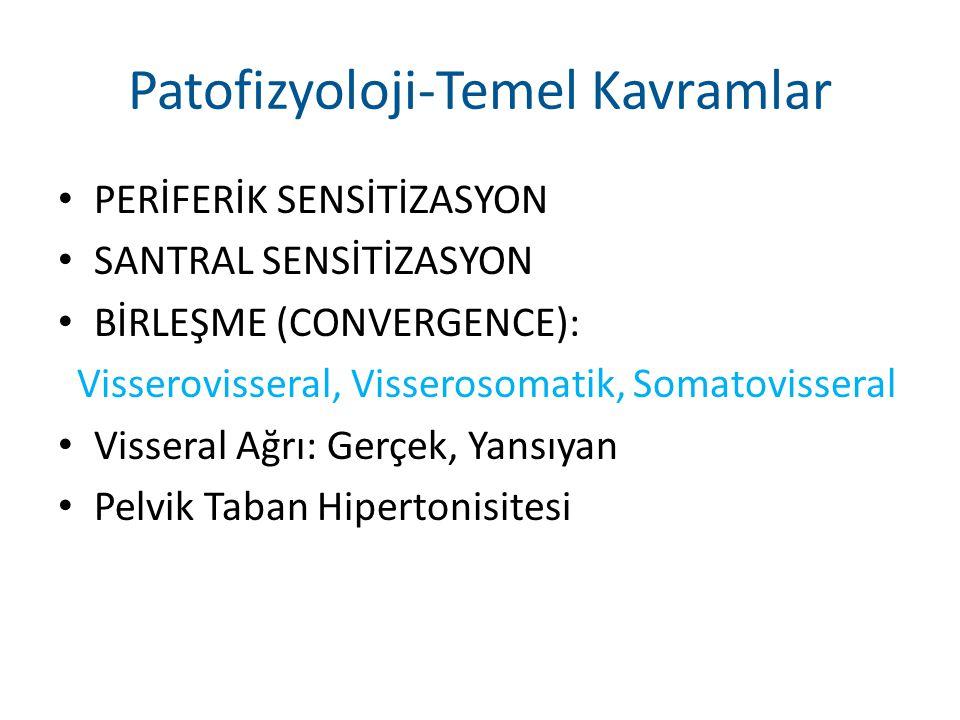 Patofizyoloji-Temel Kavramlar PERİFERİK SENSİTİZASYON SANTRAL SENSİTİZASYON BİRLEŞME (CONVERGENCE): Visserovisseral, Visserosomatik, Somatovisseral Vi