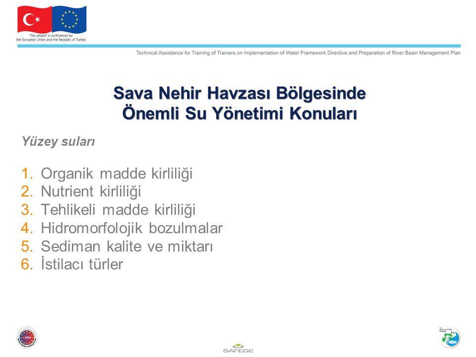Sava Nehir Havzası Bölgesinde Önemli Su Yönetimi Konuları Yüzey suları 1.Organik madde kirliliği 2.Nutrient kirliliği 3.Tehlikeli madde kirliliği 4.Hi