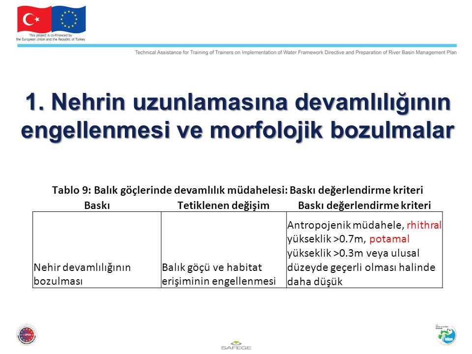 1. Nehrin uzunlamasına devamlılığının engellenmesi ve morfolojik bozulmalar Tablo 9: Balık göçlerinde devamlılık müdahelesi: Baskı değerlendirme krite