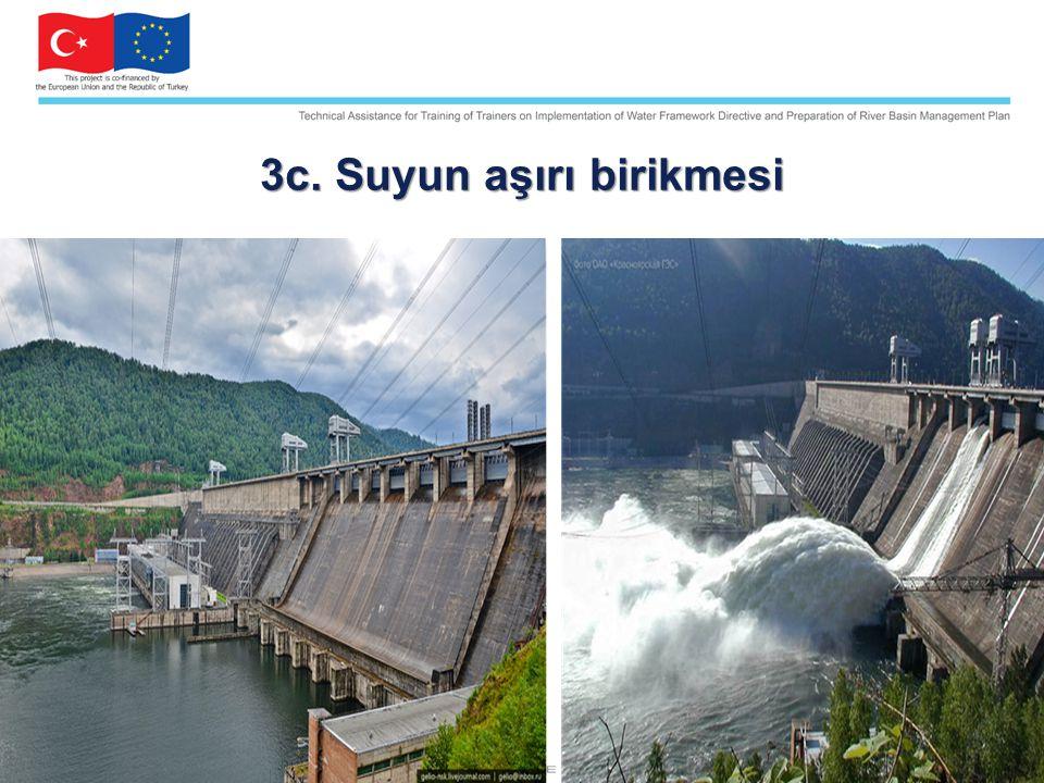 3c. Suyun aşırı birikmesi photo