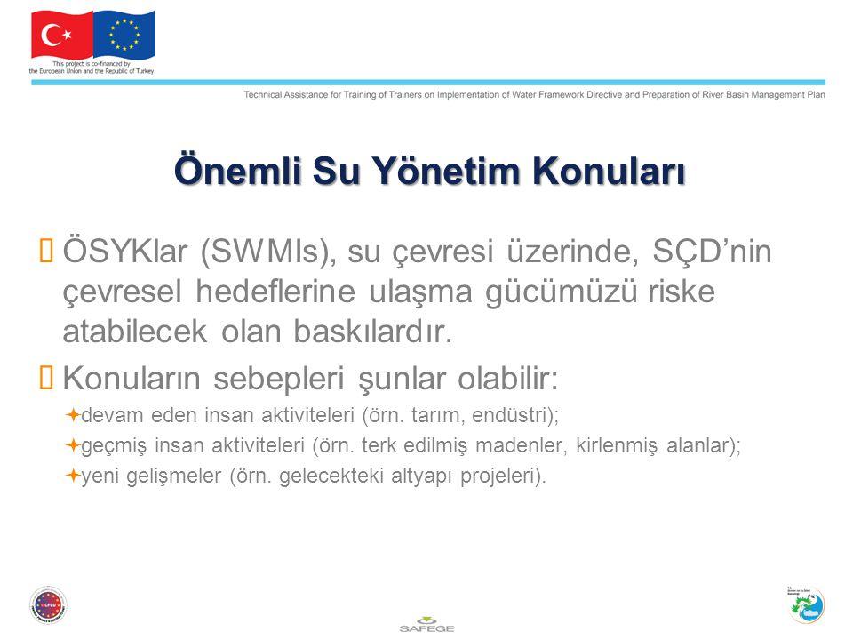Önemli Su Yönetim Konuları  ÖSYKlar (SWMIs), su çevresi üzerinde, SÇD'nin çevresel hedeflerine ulaşma gücümüzü riske atabilecek olan baskılardır.  K