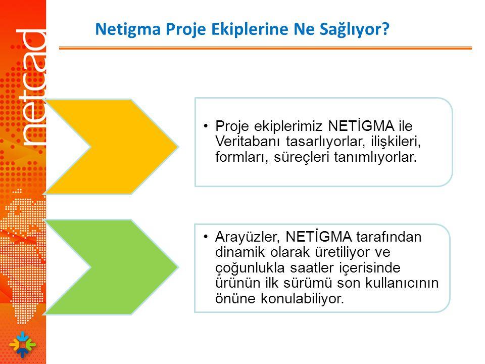 Netigma Proje Ekiplerine Ne Sağlıyor.