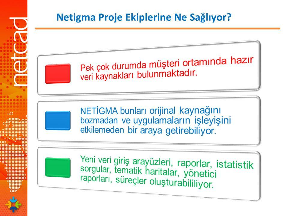 Netigma Proje Ekiplerine Ne Sağlıyor