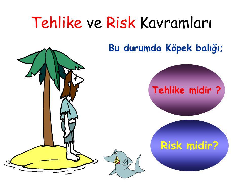 Tehlike ve Risk Kavramları  Bu durum için köpek balığı sadece bir TEHLİKEDİR.