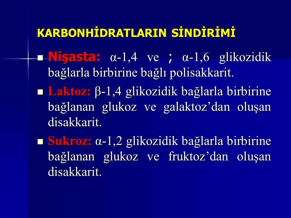 KARBONHİDRATLARIN SİNDİRİMİ