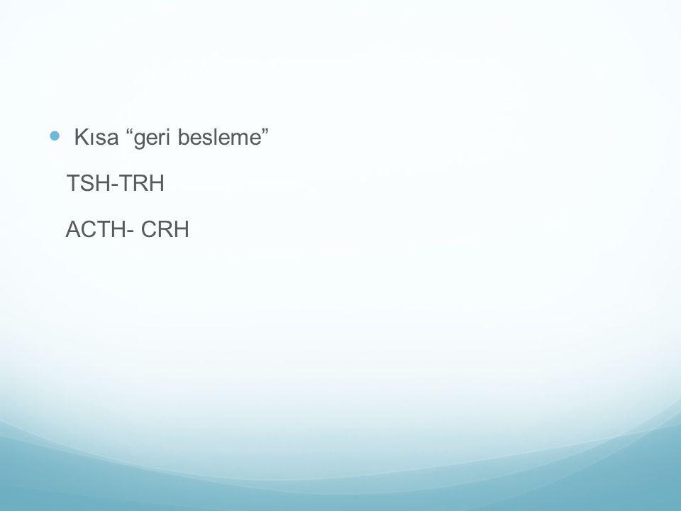 """Kısa """"geri besleme"""" TSH-TRH ACTH- CRH"""