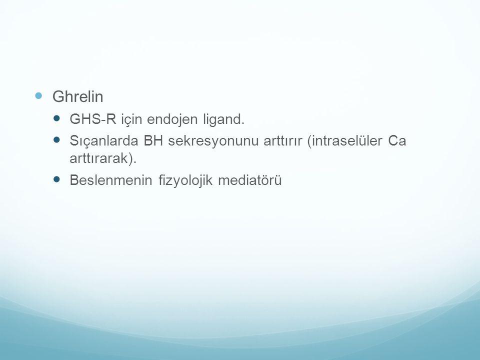 Ghrelin GHS-R için endojen ligand. Sıçanlarda BH sekresyonunu arttırır (intraselüler Ca arttırarak). Beslenmenin fizyolojik mediatörü
