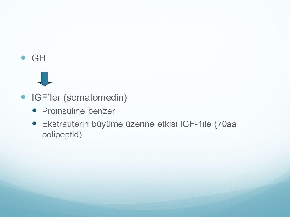 GH IGF'ler (somatomedin) Proinsuline benzer Ekstrauterin büyüme üzerine etkisi IGF-1ile (70aa polipeptid)