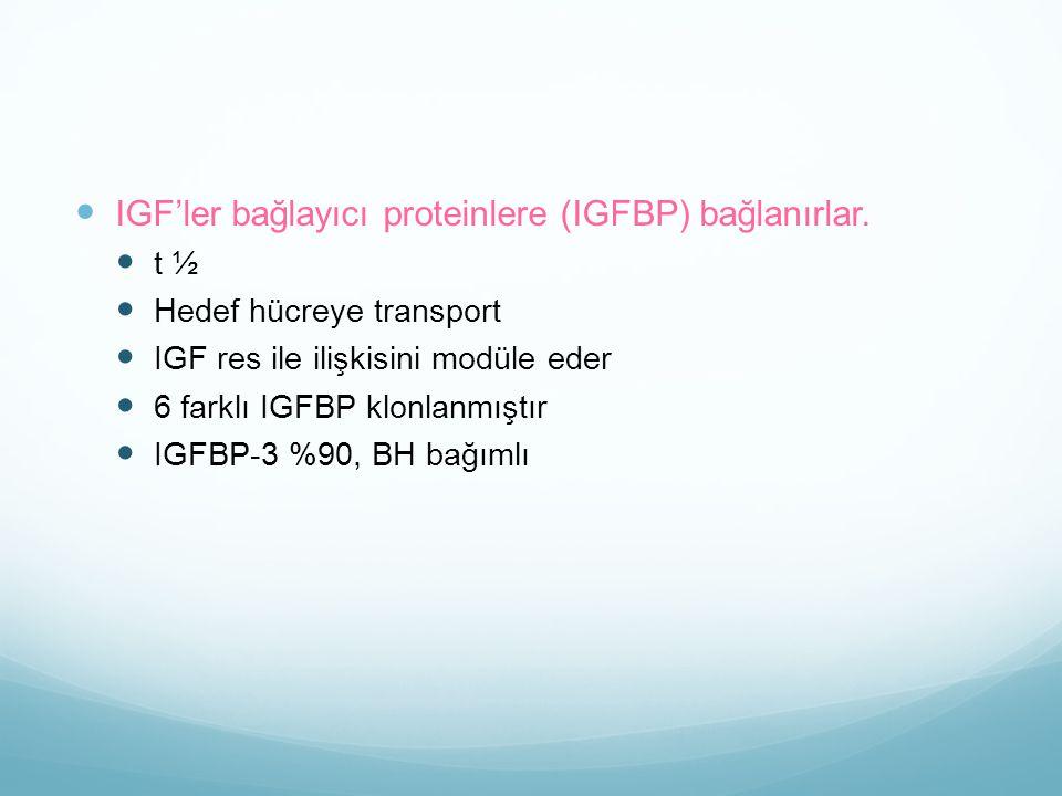 IGF'ler bağlayıcı proteinlere (IGFBP) bağlanırlar. t ½ Hedef hücreye transport IGF res ile ilişkisini modüle eder 6 farklı IGFBP klonlanmıştır IGFBP-3