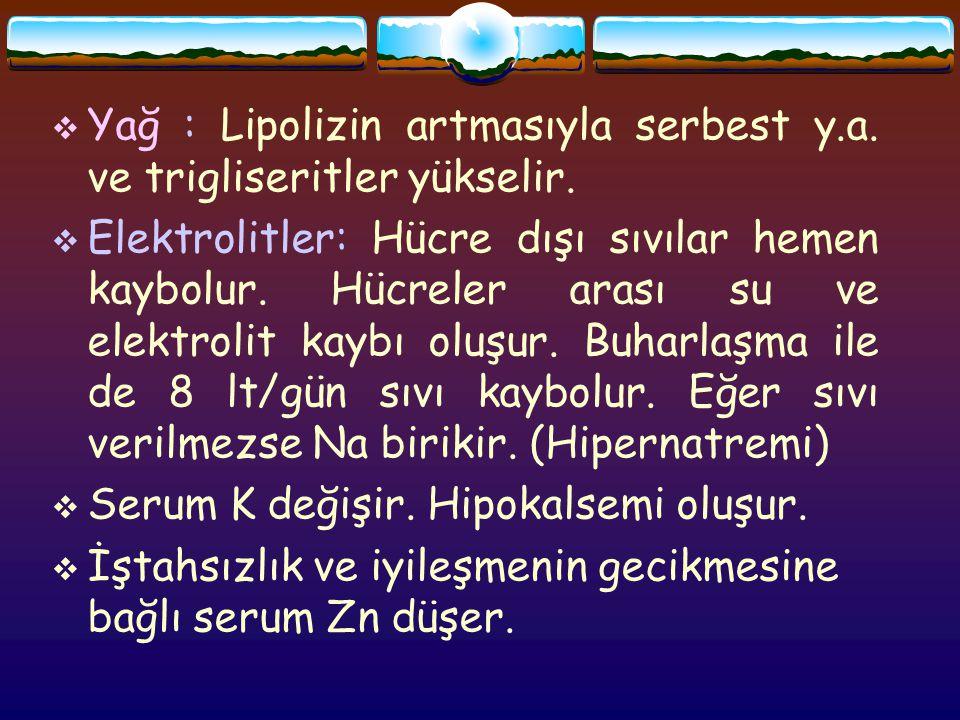  Yağ : Lipolizin artmasıyla serbest y.a.ve trigliseritler yükselir.