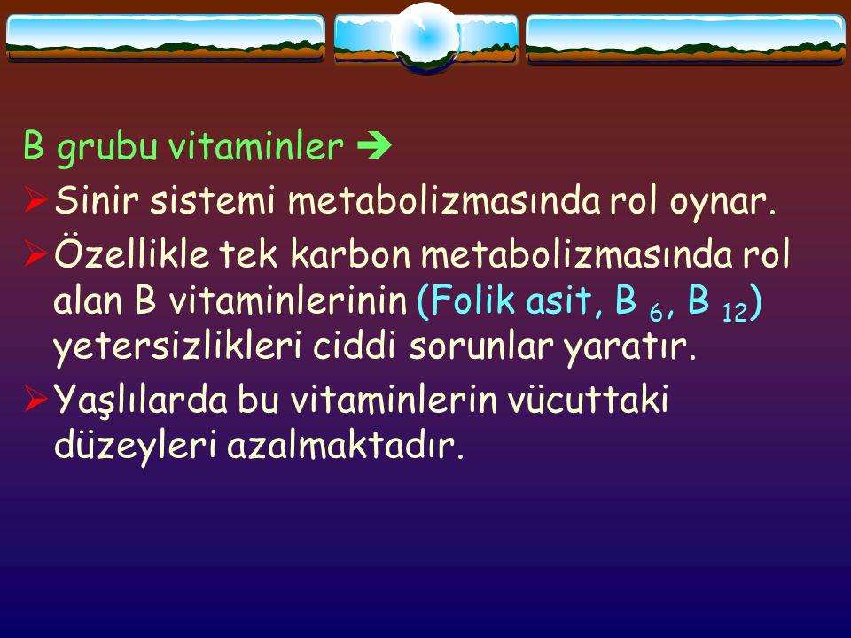 Yaşlılarda;  Atrofik gastirit mide boşalma hızının yavaşlaması intrinsik faktör salınımının azalması mide ve ince barsağın üst bölümünde pH yükselmesi başta folik asit ve B 12 olmak üzere vitamin biyoyararlılıklarının azalması ortaya çıkar  Bu vitaminler aracılığıyla metioninden s- adenosil (SAM) oluşmakta, bu s-adenosil homosisteine(SAH) o da homosisteine dönüşmektedir.
