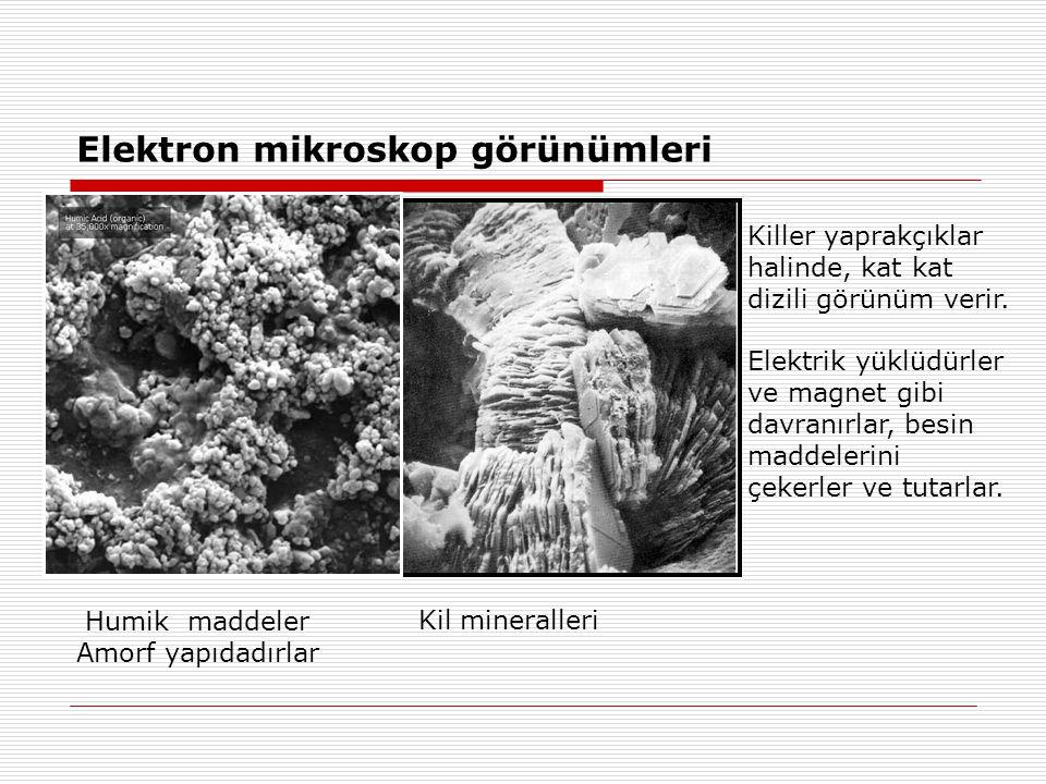 Elektron mikroskop görünümleri Killer yaprakçıklar halinde, kat kat dizili görünüm verir.