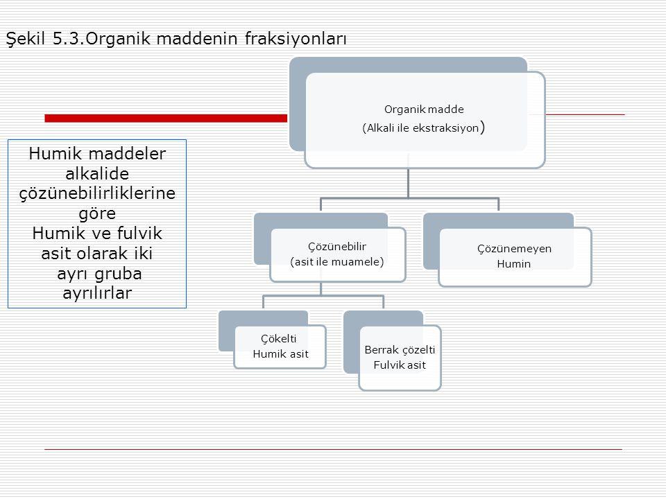 Organik madde (Alkali ile ekstraksiyon ) Çözünebilir (asit ile muamele) Çökelti Humik asit Berrak çözelti Fulvik asit Çözünemeyen Humin Şekil 5.3.Organik maddenin fraksiyonları Humik maddeler alkalide çözünebilirliklerine göre Humik ve fulvik asit olarak iki ayrı gruba ayrılırlar