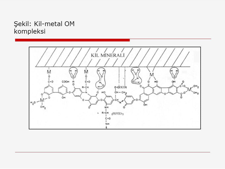 Şekil: Kil-metal OM kompleksi