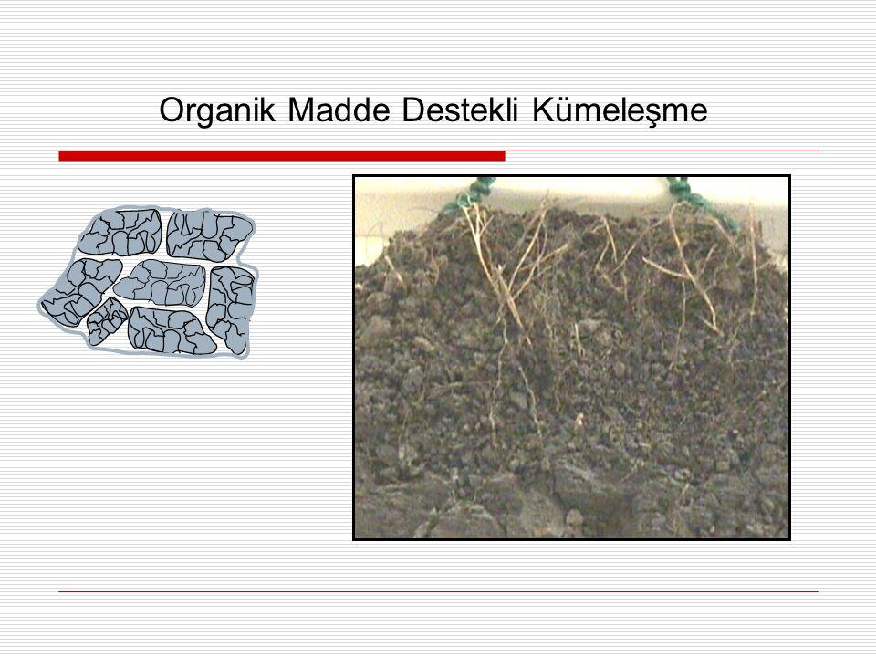 Organik Madde Destekli Kümeleşme