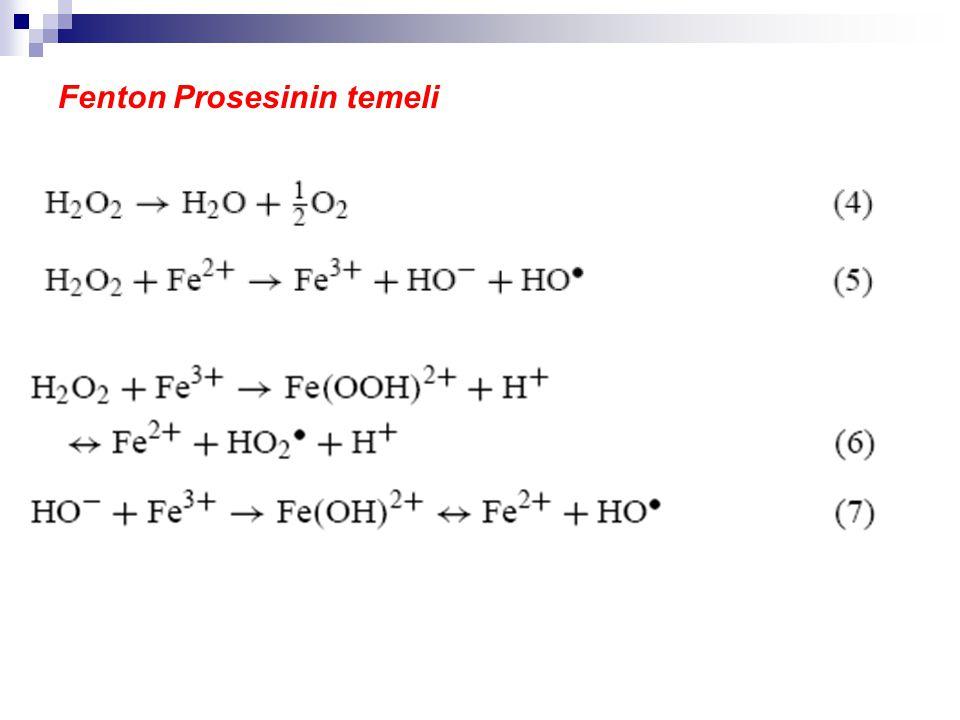 Fenton Prosesinin temeli