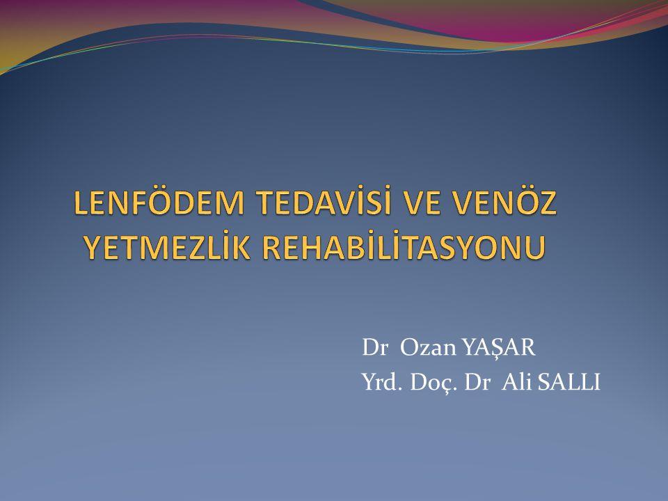 Dr Ozan YAŞAR Yrd. Doç. Dr Ali SALLI