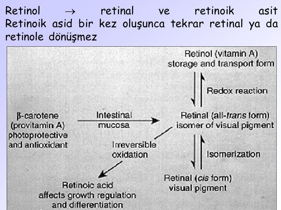 Retinol  retinal ve retinoik asit Retinoik asid bir kez oluşunca tekrar retinal ya da retinole dönüşmez