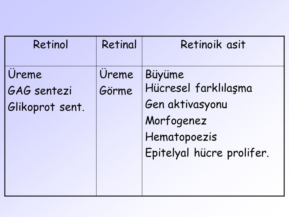 RetinolRetinalRetinoik asit Üreme GAG sentezi Glikoprot sent. Üreme Görme Büyüme Hücresel farklılaşma Gen aktivasyonu Morfogenez Hematopoezis Epitelya
