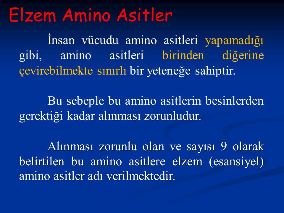Elzem Amino Asitler İnsan vücudu amino asitleri yapamadığı gibi, amino asitleri birinden diğerine çevirebilmekte sınırlı bir yeteneğe sahiptir. alınma