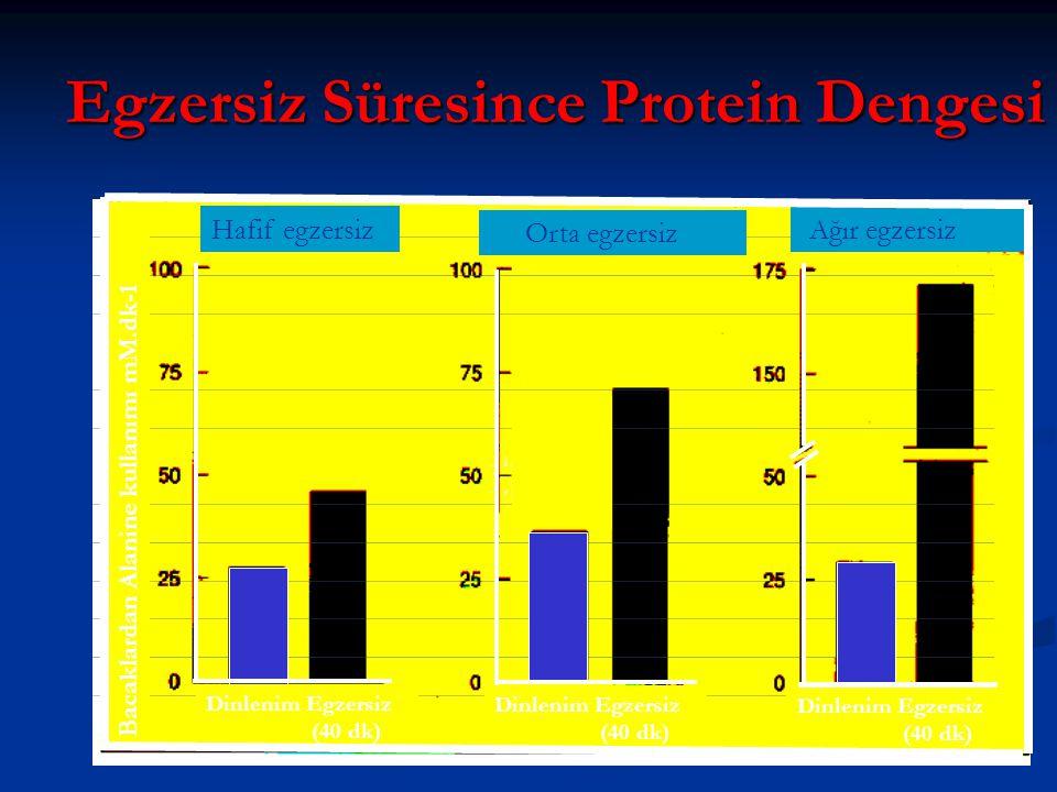 Egzersiz Süresince Protein Dengesi Hafif egzersiz Orta egzersiz Ağır egzersiz Bacaklardan Alanine kullanımı mM.dk-1 Dinlenim Egzersiz (40 dk) Dinlenim