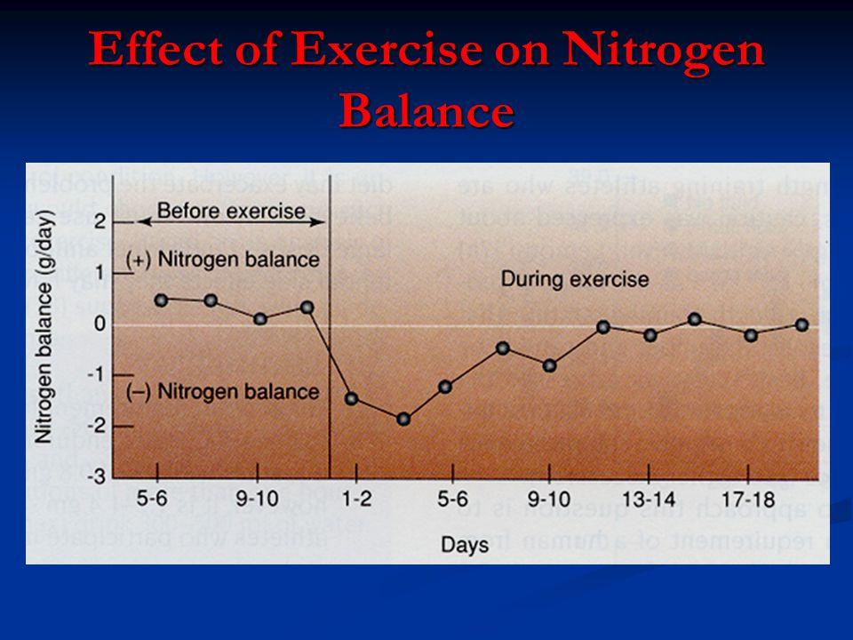 Effect of Exercise on Nitrogen Balance