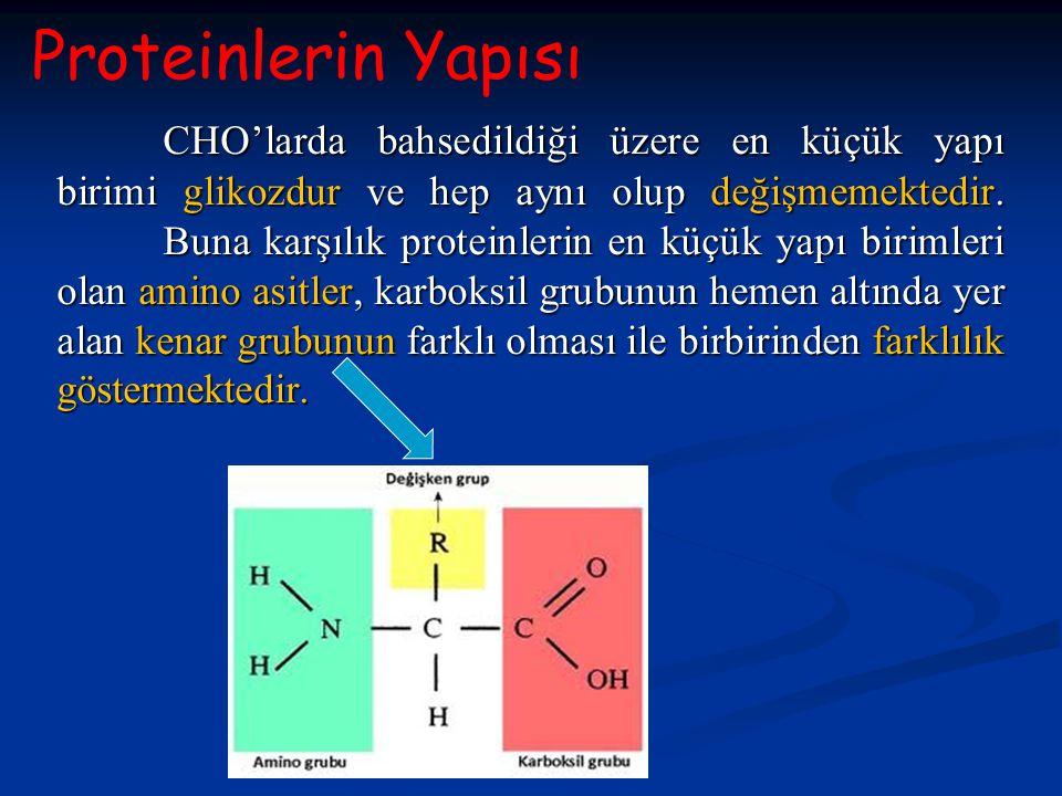 CHO'larda bahsedildiği üzere en küçük yapı birimi glikozdur ve hep aynı olup değişmemektedir. Buna karşılık proteinlerin en küçük yapı birimleri olan